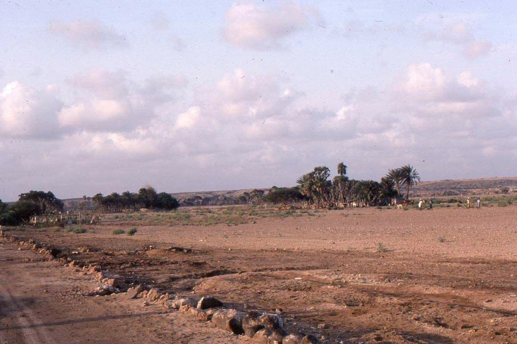 [Campagne] DJIBOUTI - TOME 1 - Page 26 Djibo128