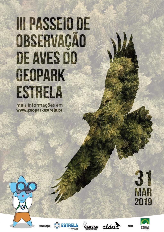 III Passeio de Observação de Aves do Geopark Estrela 51437111