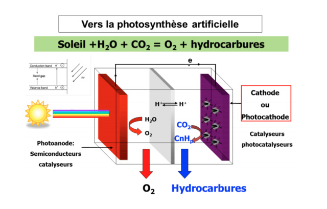 La photosynthèse artificielle: Source d'énergie 100% écologique de demain ? Screen10