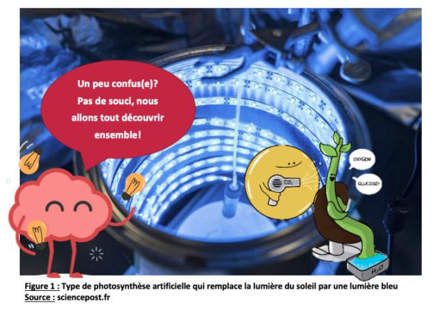 La photosynthèse artificielle: Source d'énergie 100% écologique de demain ? Screen11