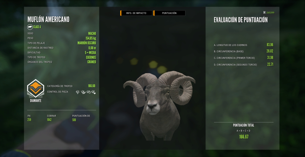 TOP 5 BIGHORN SHEEP Muflon13