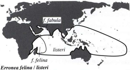 Melicerona felina (Gmelin, 1791) et Melicerona listeri (Gray, 1824) Distr010