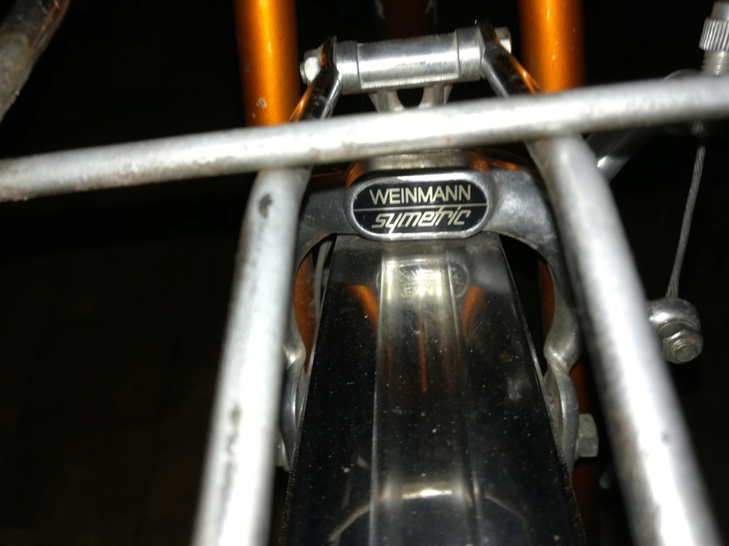 Peugeot Randonneur Img_2021