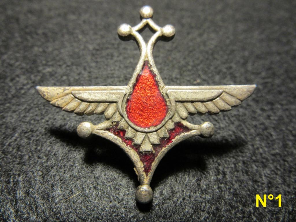 Identification insignes Armée de l'air et période d'utilisation Img_1921