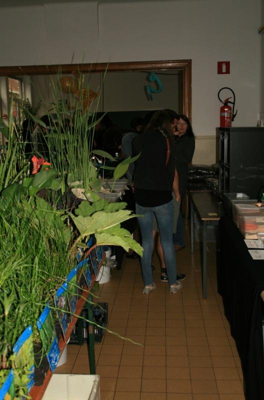 1er bourse aux plantes aquatiques le 19 juin Img_9612