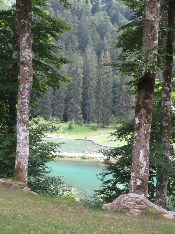 Yocco et Anook dans les Alpes 13_lac10