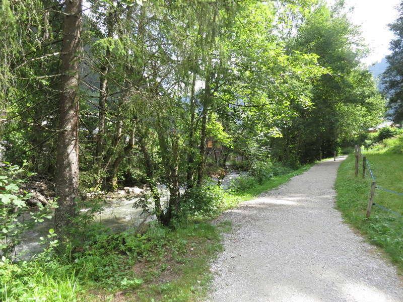 Yocco et Anook dans les Alpes 14_cha10