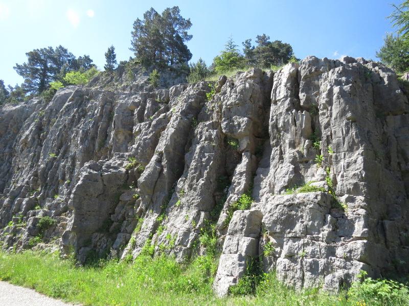 Yocco et Anook en Ardèche et en Provence 15_pay10