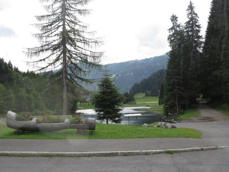 Yocco et Anook dans les Alpes 25_pas11