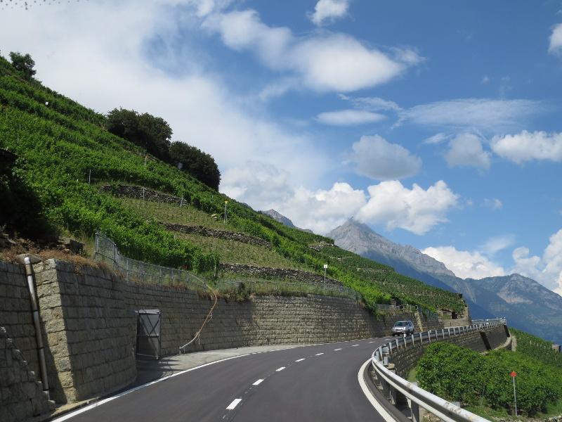 Yocco et Anook dans les Alpes 27_vig11