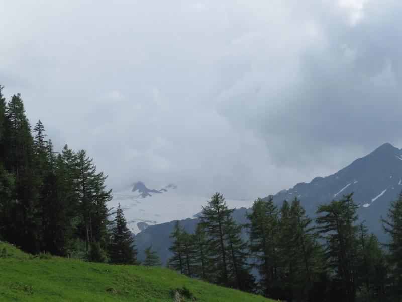 Yocco et Anook dans les Alpes 30_mon11