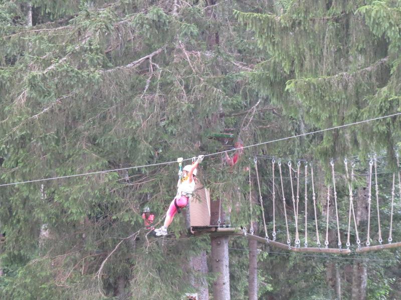 Yocco et Anook dans les Alpes 39_tyr10