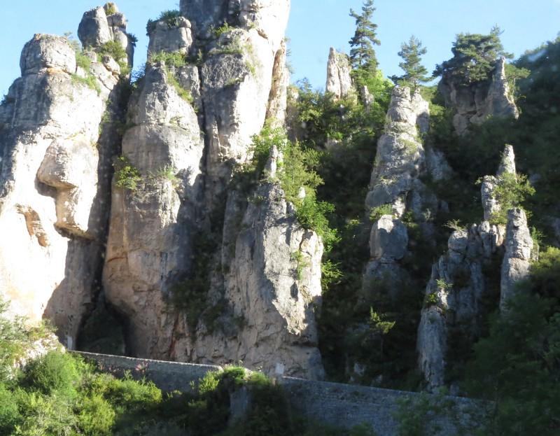 Yocco et Anook en Ardèche et en Provence 44_par10