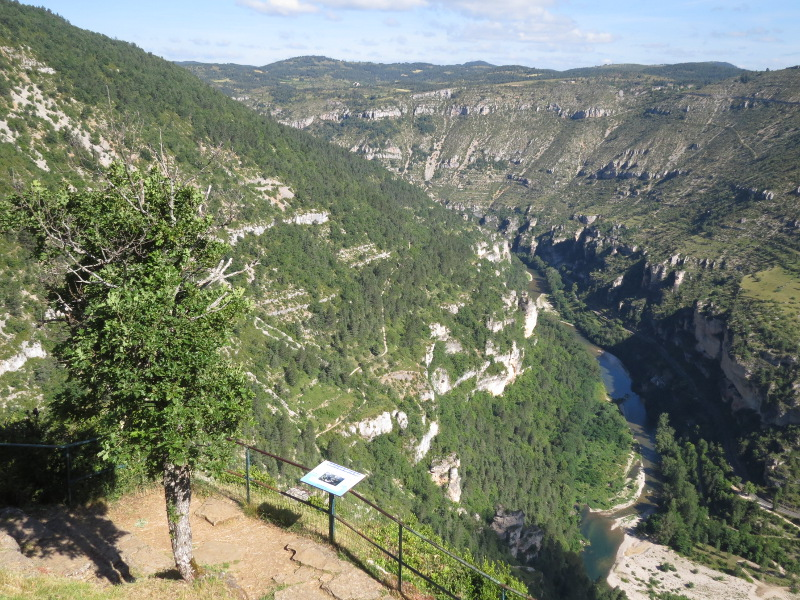 Yocco et Anook en Ardèche et en Provence 48_gor10