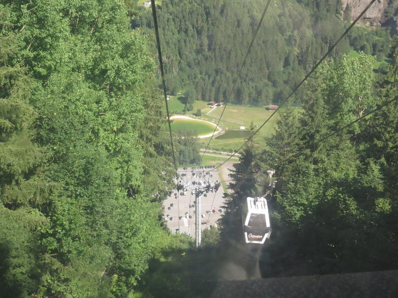 Yocco et Anook dans les Alpes 51_tyl10
