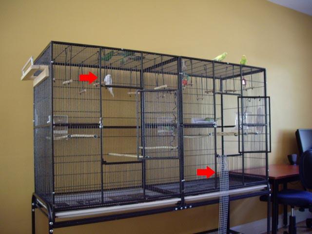Assemblage de cage model B2477 20080510