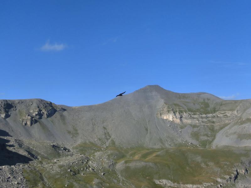 Trail en traversée Mounier - Cime Négre Cimg6410