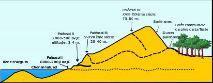 Dune du Pilat(33) (La plus haute dune de sable d ' Europe) 440px-10