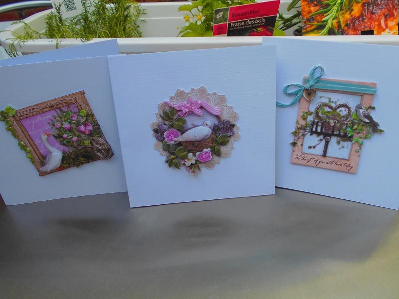 cartes - Mes bidouillages (cartes 3D) - Page 2 Dscn0311