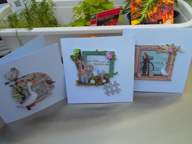 cartes - Mes bidouillages (cartes 3D) - Page 2 Dscn0313