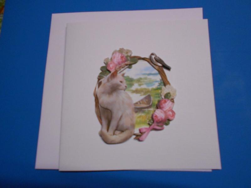 cartes - Mes bidouillages (cartes 3D) - Page 2 Dscn0319