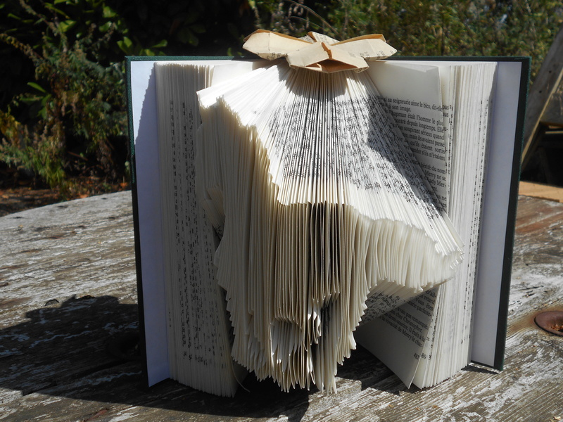 Pliage de livres Dscn0333
