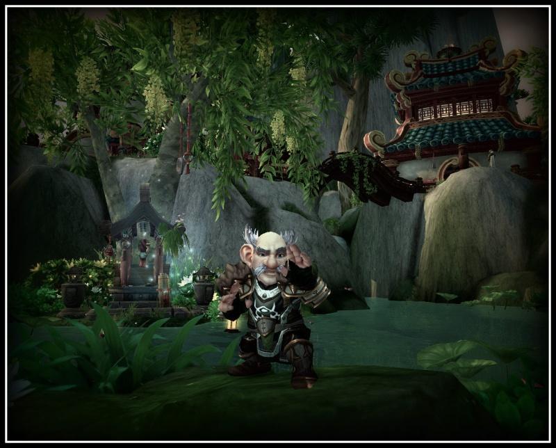 Quelques photographies de gnomes  Wowscr18
