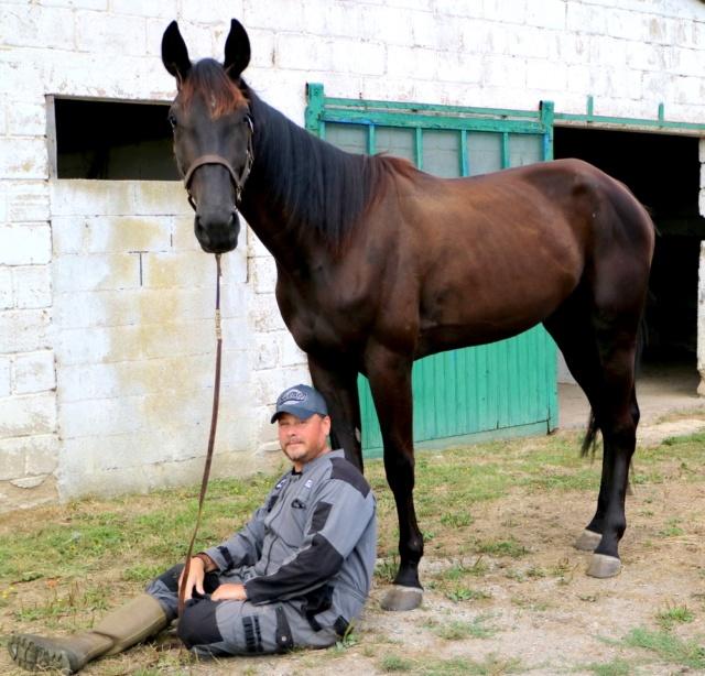 [PLACE NADEGE] GISMOND  Dormir au pied de son cheval ...... Gismon13