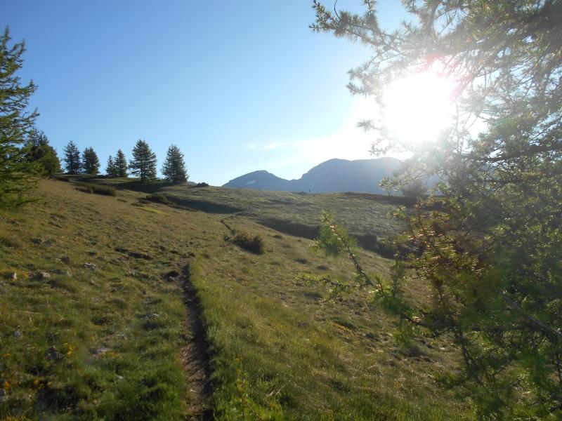 Grand-Coyer moi aussi version Trail. Trail_11