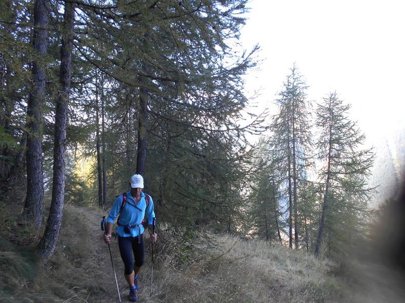 Culmen de la Tinée en Trail Trail_42
