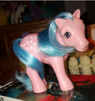 recherche principale de Mapeline : des poneys et leurs accessoires  Neux_p10