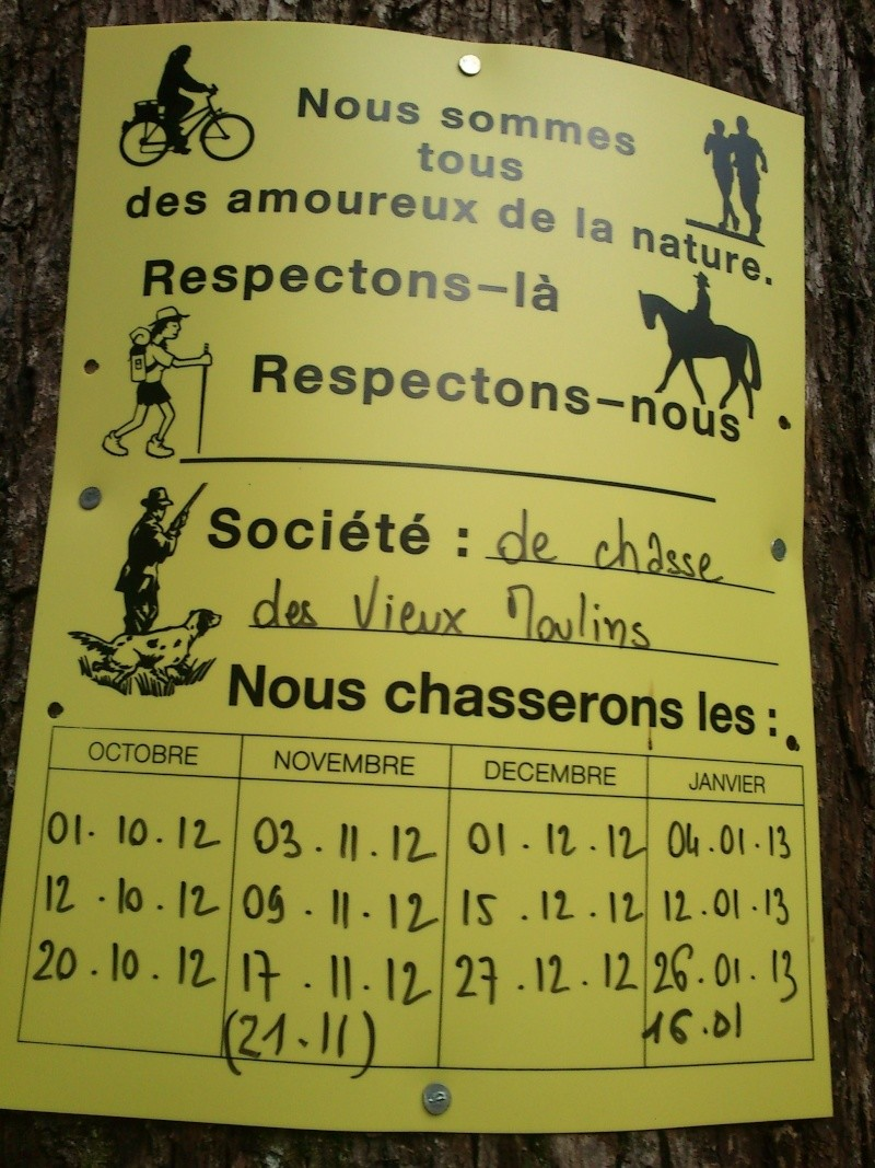 Chasse 2012/2013 Vieux_10