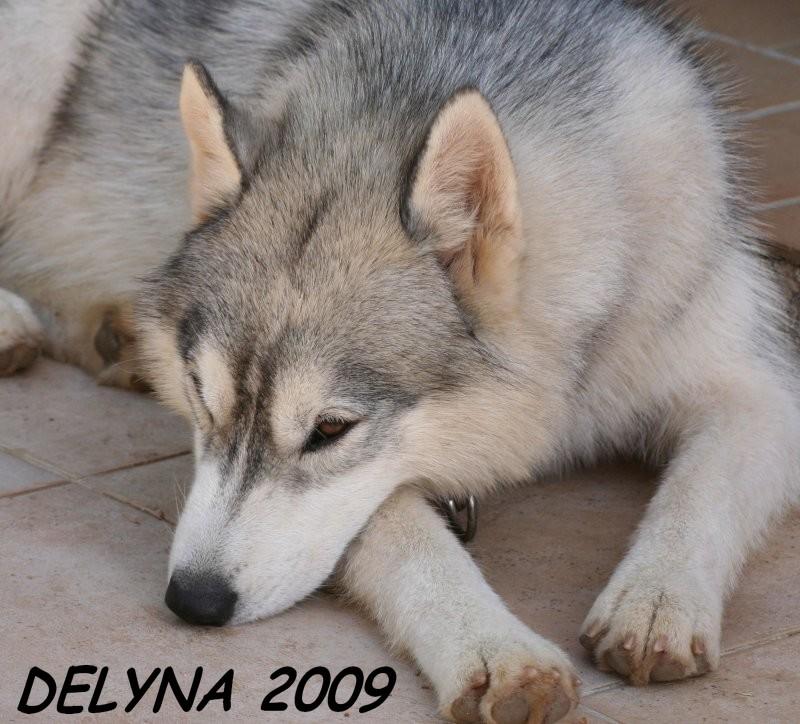 délyna - Page 2 Delyna10