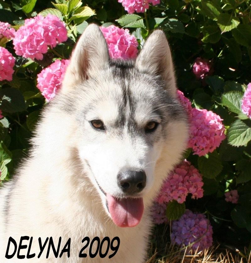 délyna - Page 2 Delyna11