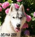 DELYNA PRISCA ou l inverse Delyna11