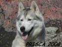 DELYNA PRISCA ou l inverse Prisca11