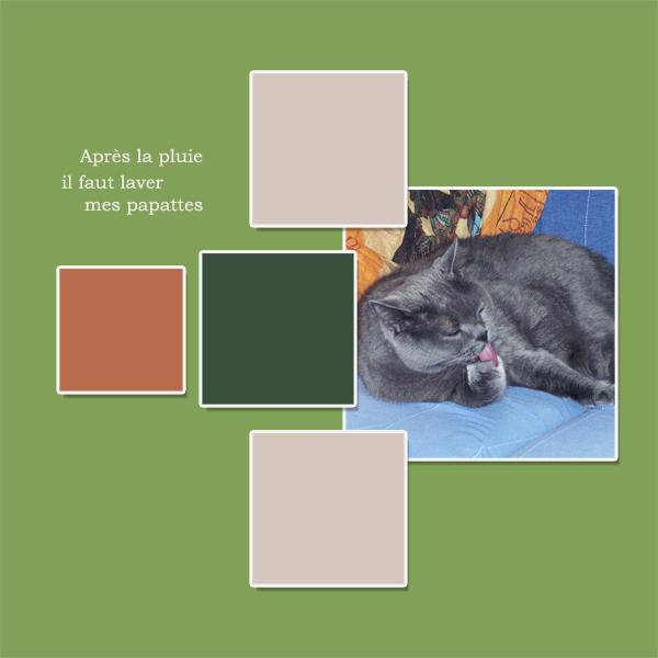 épreuve n° 48 : palette Tout_e13