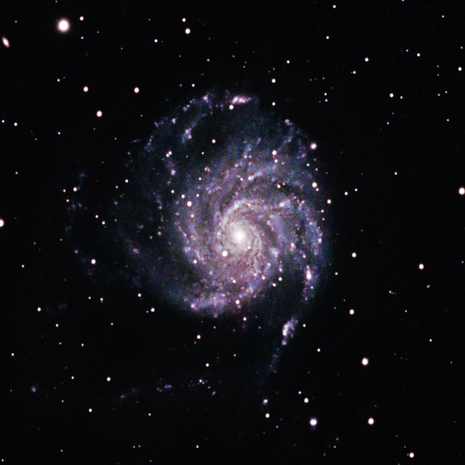M101 - La Galaxie du Moullinet dans la Grande Ourse M101_v10