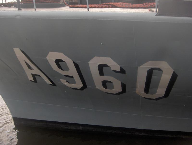 A960 GODETIA A960_g10