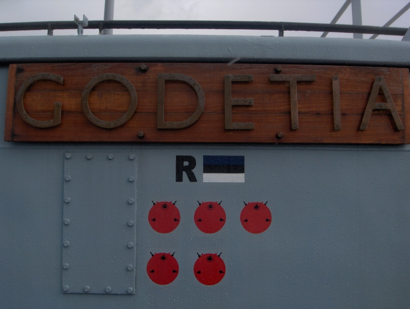 A960 GODETIA A960_g22