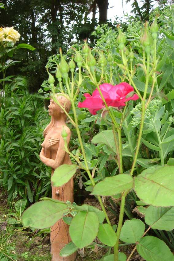 Impruneta au jardin, les quatre saisons 9w10