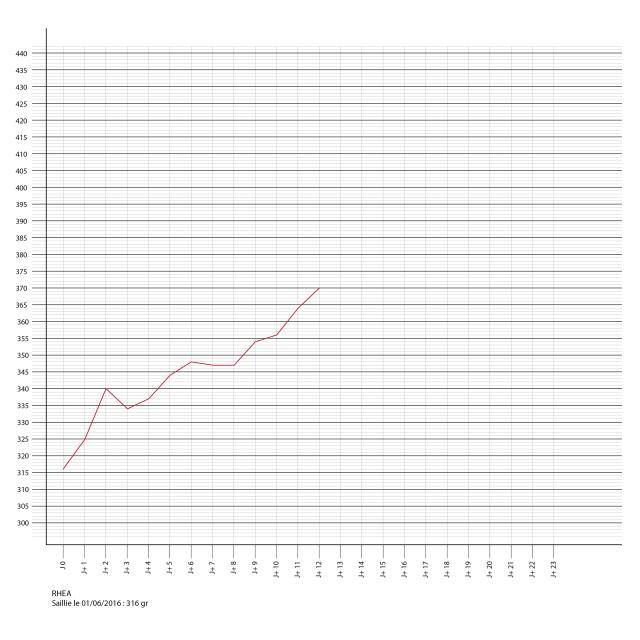 Porlamarkens Mulle murbruk / IKR Rhea Courbe10