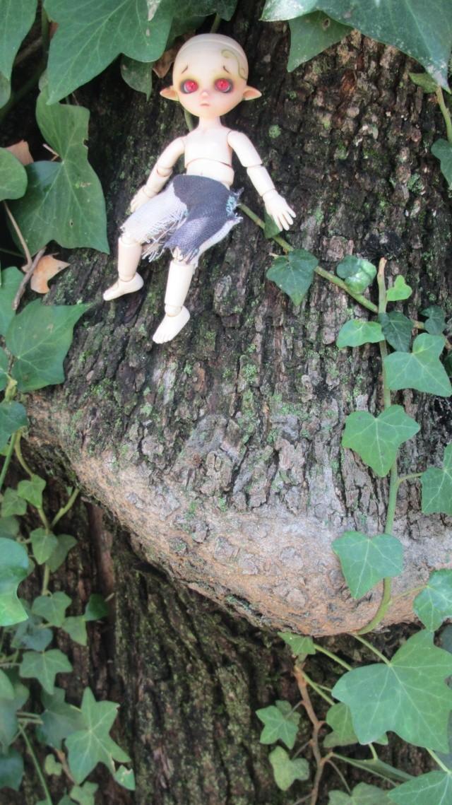 [Obitsu 11cm] Ki, esprit de la forêt Img_1914