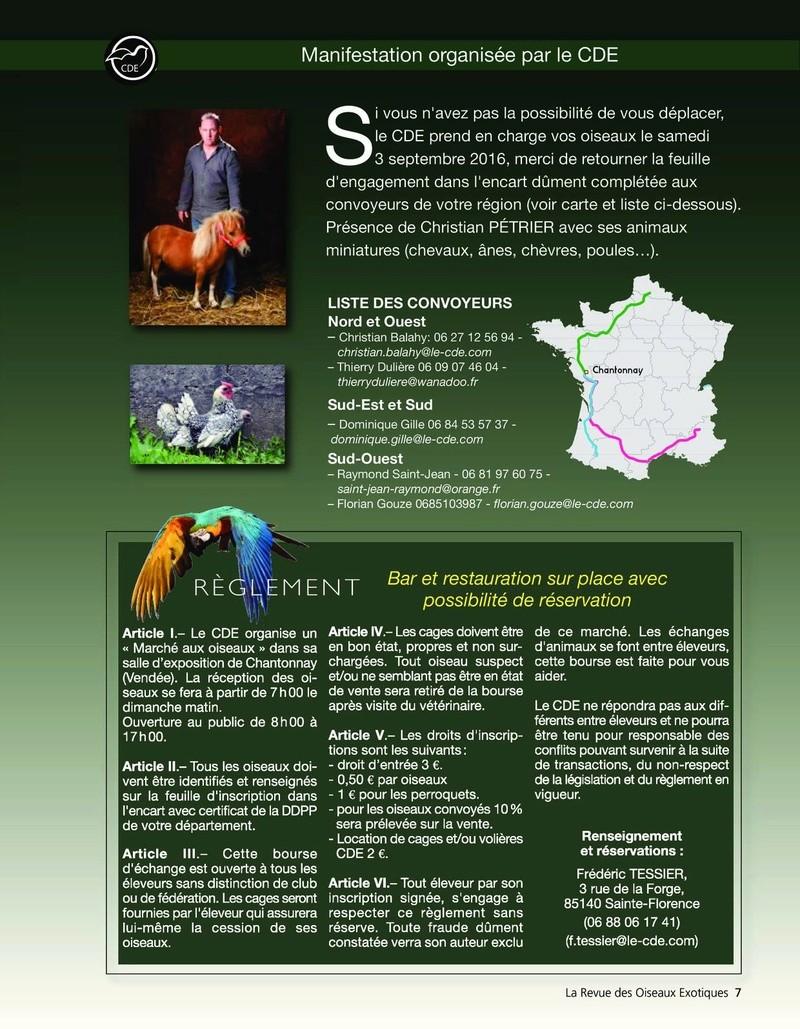 Grande bourse du C D E a Chantonnay 85  13268010