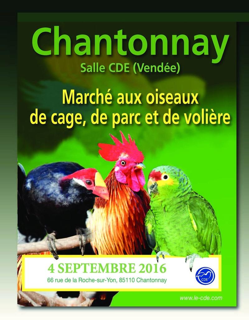 Grande bourse du C D E a Chantonnay 85  13268510