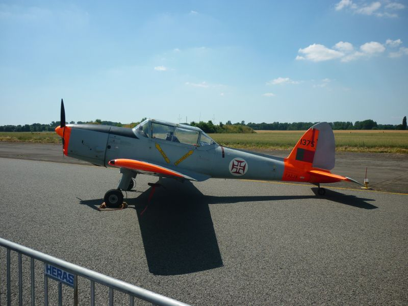 Quelques photos , modernes + warbirds P1010016