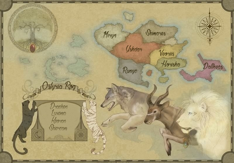 Le royaume des eleris Osmap10