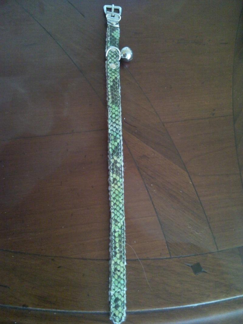 vend collier pour petit chien Snc00512