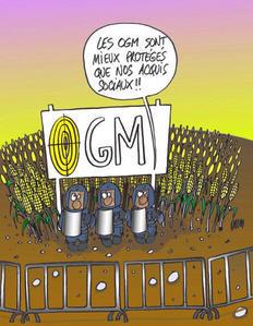 OGM mortel!!!! - Page 2 Ogm-ac10