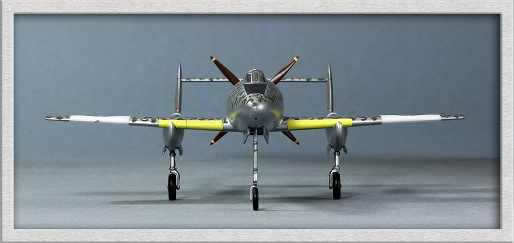 Mansyu Ki-98 Fighter (1/72, MENG)  - Page 3 Img_9514